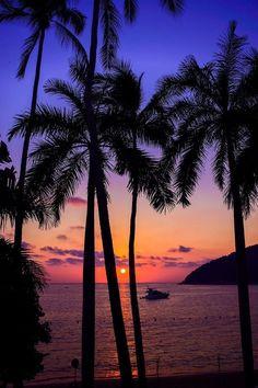 Becky and Bill enjoy an evening picnic on a beach in Acapulco Acapulco beach Sunset Beautiful World, Beautiful Places, Beautiful Pictures, Amazing Places, Osiris Tattoo, Palm Tree Sunset, Palm Trees, Hawaiian Sunset, Beautiful Sunrise