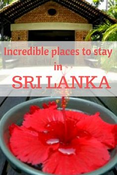 All the Best Hotels in Sri Lanka in one guide. Read about the most unusual & unique places to stay in Sri Lanka, beach hotels, botiques, resorts & homestays