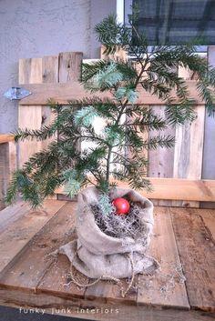 Make a burlap sacked Charlie Brown Christmas tree | Funky Junk Interiors