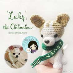 'LUCKY', the Chihuahua dog amigurumi was created for my friend. Her dog, Lucky, passed away in 2012. I know that Lucky will stay forever in her heart and now, forever with her in amigurumi form.