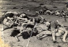 Bergen Belsen, Germany, 1945, Corpses of prisoners, after the liberation.