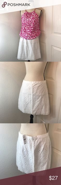 "Ann Taylor Loft Skirt Mini White Eyelet Women's 8 ⭐️️new with tags  ⭐️️fully lined white skirt  ⭐️️size 8 ⭐️️100% cotton                    ApproxMeasurements:  Waist laying flat 15.5"" Length 17"" 042817-7 🚫trades please LOFT Skirts Mini"