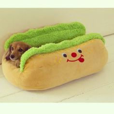 Cute dachshund in a hot dog bed