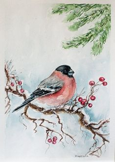 Christmas paintings Christmas gift bird in snow watercolor Christmas Watercolor bird painting gift mom gift for grandma gift for her Watercolor Art Paintings, Watercolor Bird, Watercolor Christmas, Original Paintings, Bird Paintings, Watercolor Landscape, Bird Tree, Christmas Paintings, Painting Lessons