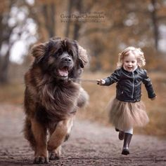 Russian Photographer Captures the Charming Connection Between Little Kids and Their Big Dogs - CHILD & PETS - Animals Pictures Dogs And Kids, Animals For Kids, Animals And Pets, Baby Animals, Dogs And Puppies, Cute Animals, Doggies, Corgi Puppies, Retriever Puppies