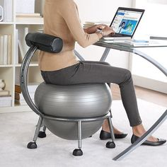 Fitness Ball Chair - $80