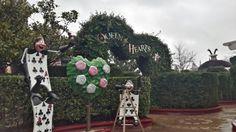 Queen of Hearts, Disneyland, Paris.