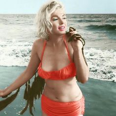 Marilyn Monroe - Photos of the sublime, divine and legendary Marilyn Monroe. Between charm, sensuality and glamor. Revisit his life through sumptuous pictures and photos. No biography, just beautiful photos. A tribute to Marilyn - Marilyn Monroe - - Marylin Monroe, Fotos Marilyn Monroe, Classic Hollywood, Old Hollywood, Stars D'hollywood, Norma Jeane, Celebs, Celebrities, Photos Du