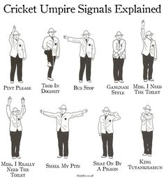 """""""The Ashes begin today, so let's take the time to brush up on what some of the more common umpire signals actually mean."""" via The Poke Cricket Quotes, Cricket Tips, Cricket Games, Test Cricket, Cricket Sport, History Of Cricket, Cricket World Cup, Ms Dhoni Photos, Ms Dhoni Wallpapers"""
