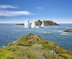 Iceberg at Crow Head, Newfoundland & Labrador, Canada Newfoundland Canada, Newfoundland And Labrador, Atlantic Canada, Fjord, Top Destinations, Fishing Villages, Canada Travel, Nova Scotia, East Coast