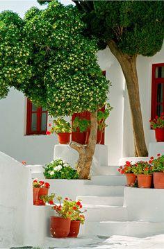 Mykonos, Cyclades, Greece [+] Photo: Georgios P. Places Around The World, Around The Worlds, Wonderful Places, Beautiful Places, Places To Travel, Places To Go, Myconos, Greek Isles, Mykonos Greece