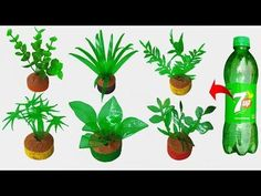 8 Seductive Clever Tips: Artificial Plants Living Room Indoor Palms artificial plants indoor pots.Small Artificial Plants Decor artificial grass on concrete. Plastic Bottle Flowers, Plastic Bottle Crafts, Artificial Plants And Trees, Artificial Flowers, Plant Wall, Plant Decor, Hanging Plants, Indoor Plants, Hanging Baskets