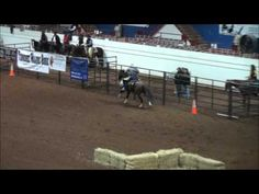 Talk about a horse with buttons! -Extreme Cowboy Race
