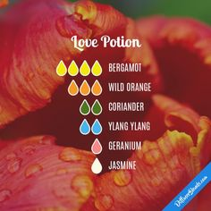 Love Potion - Essential Oil Diffuser Blend