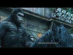 Dawn of the Planet of the Apes: TV Spot --  -- http://www.movieweb.com/movie/dawn-of-the-planet-of-the-apes/tv-spot