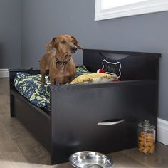 South Shore Step One Dog Bed with Storage & Cushion Cover