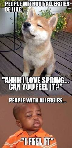 Allergic People #Love, #Spring