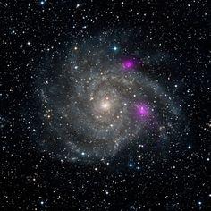 Blazing Black Holes Spotted in Spiral Beauty (spiral galaxy IC 342 aka Caldwell 5) | Image credit: NASA/JPL-Caltech/DSS, via NASA (#spaceimages #nustar #spiralgalaxy #nasa)