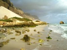 Socotra the island of happiness - Beauty will save