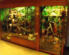 Large Reptile Enclosures | Received Raymond Ditmars' Reptile Book. His father helped build cages ...
