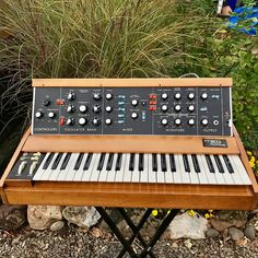 Being perhaps the most popular version of one of the most iconic monophonic analog synth series of all time is no easy feat, but the Moog Minimoog Model D Moog Synthesizer, Analog Synth, Electric Piano, Recording Equipment, Keyboard Piano, Home Studio Music, 70s Music, Drum Machine, Music Composers