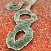"""e-revista de AMYTS avance semanal de la RMM: SALUD LABORAL. """"Pendientes del Ébola, preparados p..."""