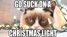 Crappy Holidays From Grumpy Cat!