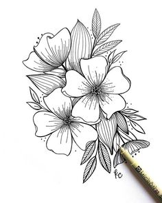 Pencil Art Drawings, Drawing Sketches, Drawing Drawing, Flower Sketches, Flower Drawings, Floral Drawing, Flower Doodles, Cute Tattoos, Doodle Art