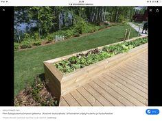 Herb Garden, Vegetable Garden, Home And Garden, Deck Planters, Outdoor Living, Outdoor Decor, Curb Appeal, Exterior Design, Outdoor Gardens