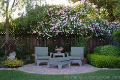 Garden Designers Roundtable: Our Home Gardens — Gossip in the Garden Privacy Landscaping, Backyard Privacy, Landscaping Ideas, Garden Landscaping, Landscaping Melbourne, Luxury Landscaping, Landscaping Software, Small Gardens, Outdoor Gardens
