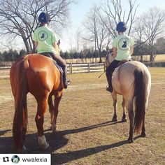 Welsh Wear warm weather and ponies .... sounds like a pretty good day to us! #repost @wwalexia