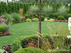 Ogród mały, ale pojemny;) - strona 131 - Forum ogrodnicze - Ogrodowisko