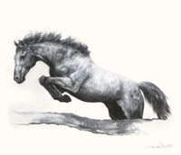 TROWBRIDGE - Meridith Martens Horses - This set of eight pen and ink studies of horses in motion is by the North Carolina artist Meridith Ma...