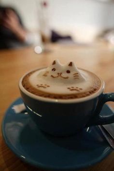 Happy Cat in a Coffee Bath