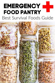 This long term food storage guide has a variety of foods for anyone who may be want to stock an emergency food pantry. These foods all last a year or more, so they have a long shelf life! Stock up…More Emergency Food Storage, Emergency Food Supply, Emergency Preparation, Food For Emergencies, Best Emergency Food, Food Preparation, Best Survival Food, Survival Prepping, Survival Gear