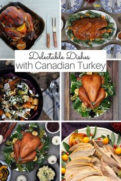 Head over to Canadian Turkey to find mouth-watering recipes for delectable dinners - and breakfasts and lunches, too!