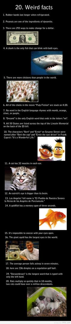 20 weird facts. I might love random things like this a little too much :)