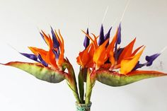 {An awesome bouquet of Bird of Paradise flowers featured on BaoMoi.com}
