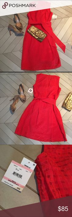 NWT Anne Klein Organza Fit & Flare Dress Sheer gingham organza fit and flare dress great for any occasion. Beautiful tomato red. Light, fun and flattering. NWT. Currently retails for $129 Anne Klein Dresses