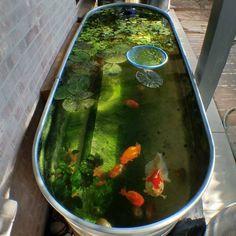 37 Creative Small Fish Pond Design Ideas To Beautify Your Outdoor Decor Indoor Pond, Outdoor Ponds, Indoor Water Garden, Outdoor Fountains, Patio Pond, Ponds Backyard, Koi Ponds, Backyard Waterfalls, Garden Ponds