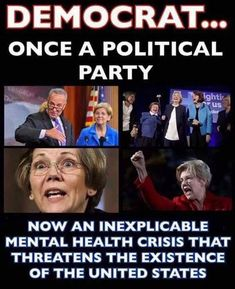 No freaking kidding! for the LIBERAL pathogen that's eating our country from the inside out. Liberal Democrats, Liberal Logic, Stupid Liberals, Truth Hurts, It Hurts, Mental Health Crisis, Political Quotes, Political Issues