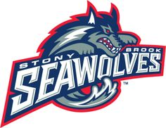 The Stony Brook University Seawolves Tennis Team will hold a Family FunFest on Saturday, March 23 from 6:00 p.m.-9:30 p.m. to raise money to support the team and its activities
