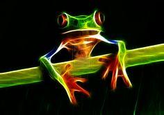 PHOTO FRACTAL 13 by colbyfurniss.deviantart.com