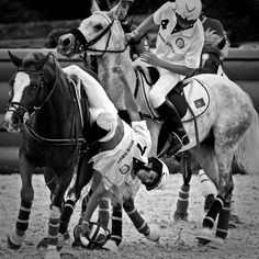 Horse games, horse patterns I love how this picture shows how far they have to reach to get the ball. Dressage, Horse Games, Horse Pattern, Horseback Riding, Horse Riding, Barber Shop, Picture Show, Ponies, Mazda