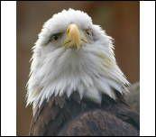 image 18212 @openphoto.net.net
