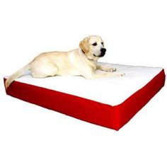 Large/Extra Large 34x48 Majestic Pet Orthopedic Double Pet Bed,Multiple Colors, Red