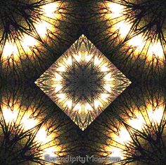 Day 31: Fan Dance (kaleidoscope)