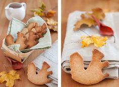 Dinkel Haselnuss Kekse (ohne Zucker)