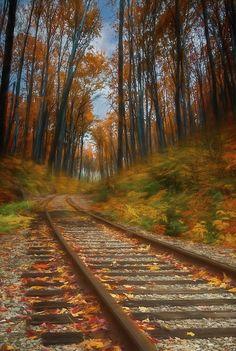 Train Tracks, Prints For Sale, Wall Art, Artwork, Photography, Work Of Art, Photograph, Auguste Rodin Artwork, Fotografie