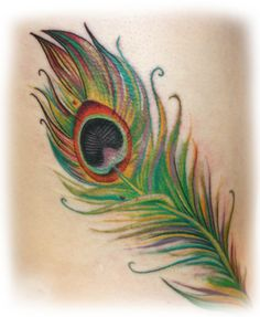 Peacock Feather | Peacock feather tattoo